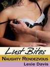 Naughty Rendezvous (eBook)